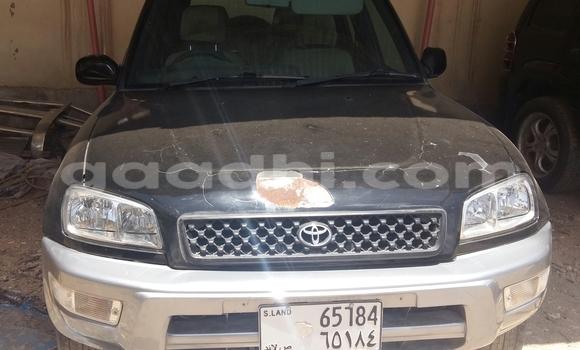 Buy Used Suzuki Alto Black Car in Hargeysa in Somaliland