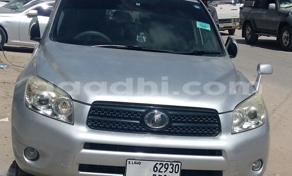 Buy New Toyota RAV4 Silver Car in Hargeysa in Somaliland