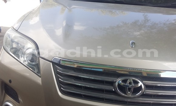 Buy Used Toyota Venza Beige Car in Hargeysa in Somaliland