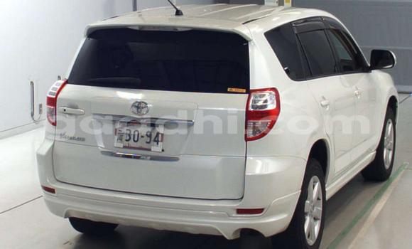 Buy Used Toyota RAV4 White Car in Hargeysa in Somaliland