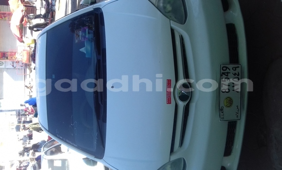 Buy New Toyota Platz White Car in Hargeysa in Somaliland