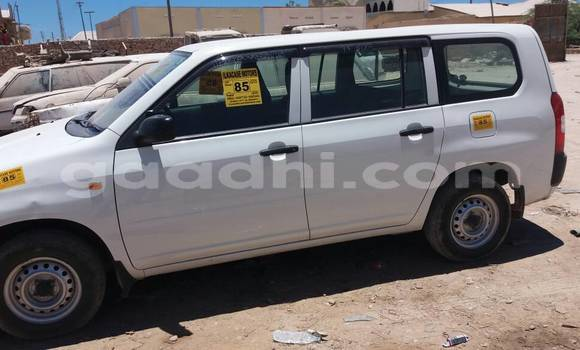 Buy New Toyota Probox White Car in Bosaso in Somalia