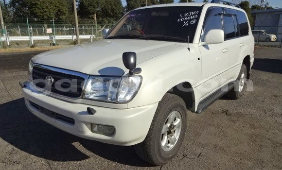 Buy Used Toyota Land Cruiser White Car in Berbera in Somalia