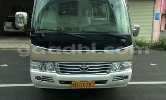 Buy Used Toyota Coaster Brown Car in Mogadishu in Somalia