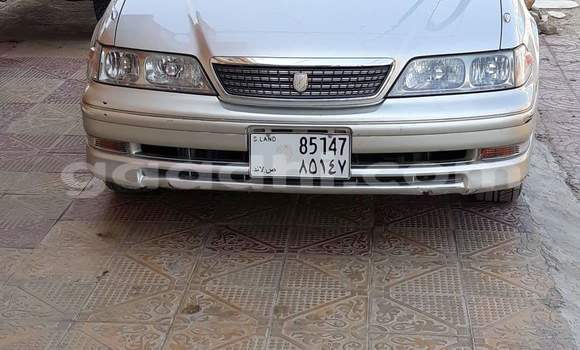 Buy Used Toyota Mark II Silver Car in Borama in Awdal