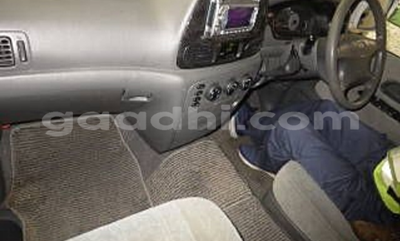 Medium with watermark pajero3