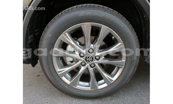 Buy Import Toyota RAV4 Black Car in Import - Dubai in Somalia