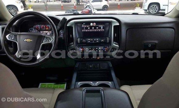 Buy Import Chevrolet Silverado White Car in Import - Dubai in Somalia