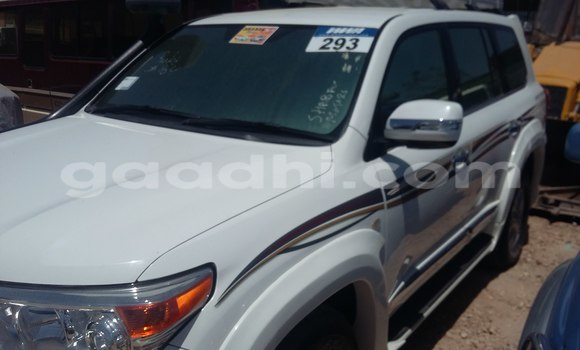 Buy Used Toyota Land Cruiser White Car in Hargeysa in Somaliland