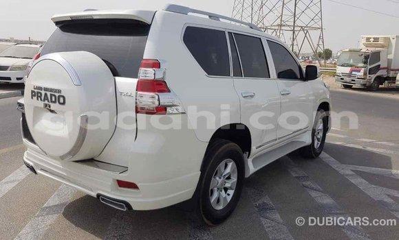 Buy Import Toyota Prado White Car in Import - Dubai in Somalia