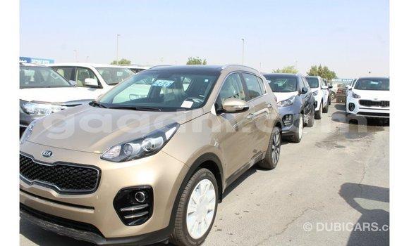 Buy Import Kia Sportage Black Car in Import - Dubai in Somalia