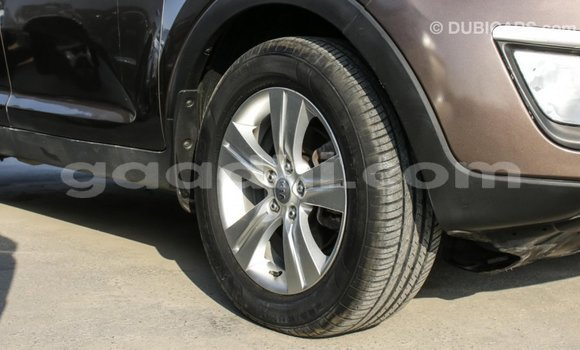 Buy Import Kia Sportage Brown Car in Import - Dubai in Somalia