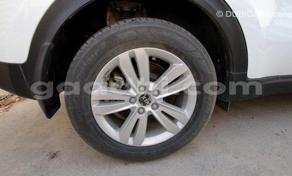 Buy Import Kia Sportage White Car in Import - Dubai in Somalia