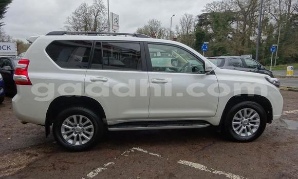 Buy Used Toyota Land Cruiser Prado White Car in Mogadishu in Somalia