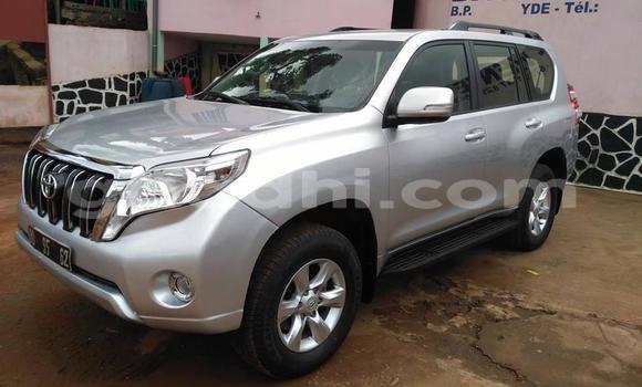 Buy Used Toyota Land Cruiser Prado Silver Car in Mogadishu in Somalia