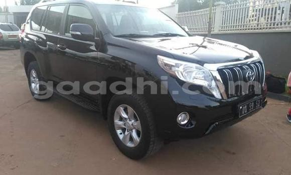 Buy Used Toyota Land Cruiser Prado Black Car in Mogadishu in Somalia