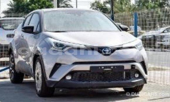 Buy Import Toyota C-HR Other Car in Import - Dubai in Somalia