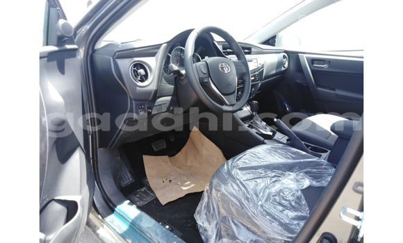 Buy Import Toyota Corolla Other Car in Import - Dubai in Somalia