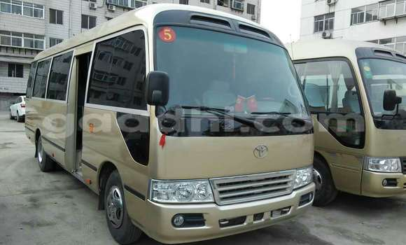 Buy Used Toyota Coaster Other Car in Mogadishu in Somalia